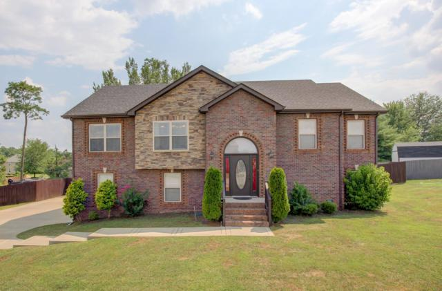 1508 Mammy Ln, Clarksville, TN 37042 (MLS #1946510) :: Group 46:10 Middle Tennessee