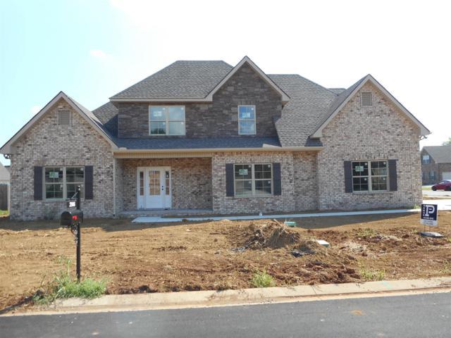 2906 Lightning Bug Drive, Murfreesboro, TN 37129 (MLS #1946754) :: Ashley Claire Real Estate - Benchmark Realty