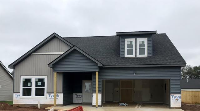 48 Beech Grove, Clarksville, TN 37043 (MLS #1957327) :: John Jones Real Estate LLC