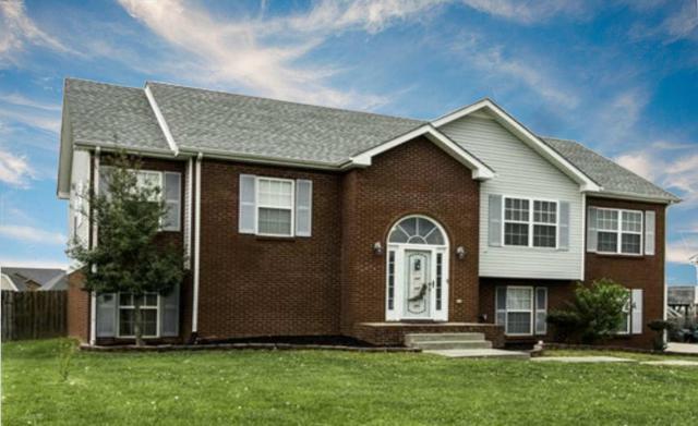 3176 Twelve Oaks Blvd, Clarksville, TN 37042 (MLS #1957798) :: EXIT Realty Bob Lamb & Associates