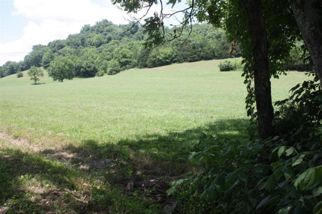 0 Puncheon Camp Rd, Tract 2, Bell Buckle, TN 37020 (MLS #1959086) :: The Matt Ward Group