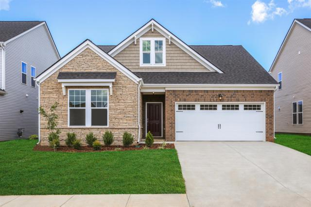 3242 Amaranth Ave (Lot 192), Murfreesboro, TN 37128 (MLS #1964256) :: The Kelton Group
