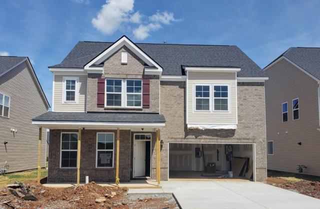 3222 Amaranth Ave (Lot 197), Murfreesboro, TN 37128 (MLS #1966409) :: DeSelms Real Estate