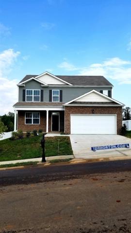 232 Autumn Terrace Ln- Lot 162, Clarksville, TN 37040 (MLS #1967021) :: Nashville On The Move