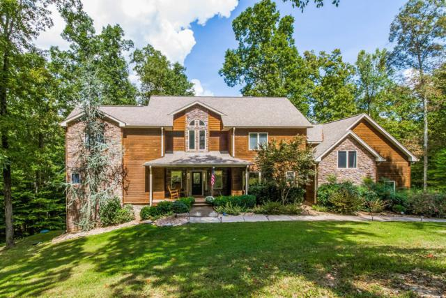 245 Cimmaron Way, Ashland City, TN 37015 (MLS #1968857) :: REMAX Elite