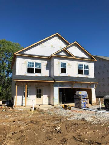963 Carnation Drive, Spring Hill, TN 37174 (MLS #1969122) :: Nashville on the Move