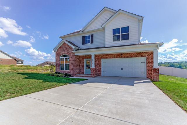 5543 Stonefield Drive, Smyrna, TN 37167 (MLS #1972768) :: DeSelms Real Estate