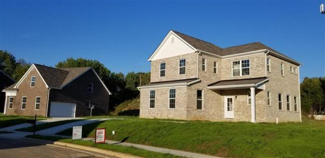 1028 Trevino Place, Lot #15, Antioch, TN 37013 (MLS #1975997) :: Nashville on the Move