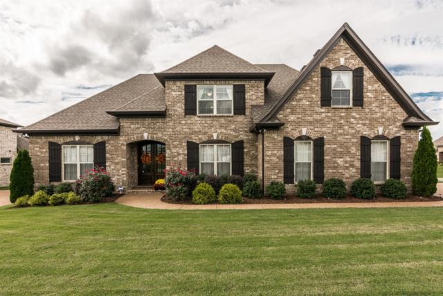 207 Ettington Dr, Gallatin, TN 37066 (MLS #1978948) :: REMAX Elite