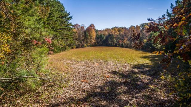 100 Johnson Chapel Rd, Sparta, TN 38583 (MLS #1985134) :: John Jones Real Estate LLC