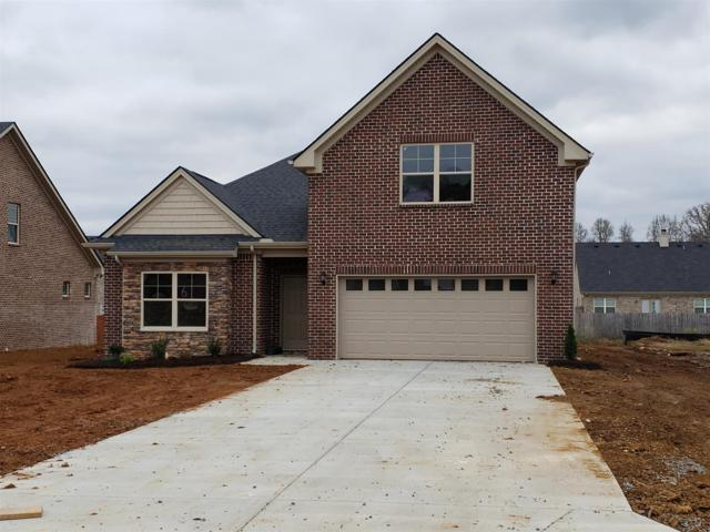 1019 Selous Dr, Murfreesboro, TN 37128 (MLS #1985405) :: John Jones Real Estate LLC