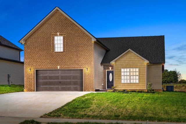 269 Towes Lane, Clarksville, TN 37043 (MLS #1985431) :: John Jones Real Estate LLC
