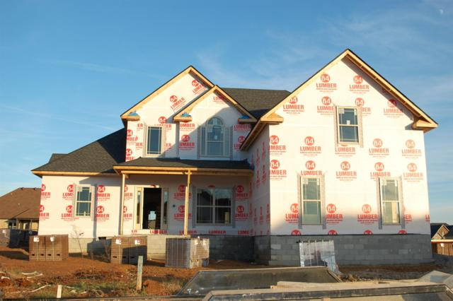 53 Hartley Hills, Clarksville, TN 37043 (MLS #1987458) :: EXIT Realty Bob Lamb & Associates