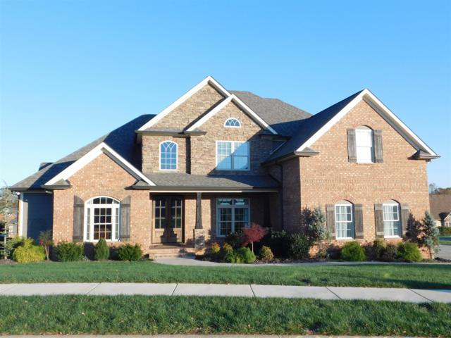 1480 Collins View Way, Clarksville, TN 37043 (MLS #1988365) :: REMAX Elite