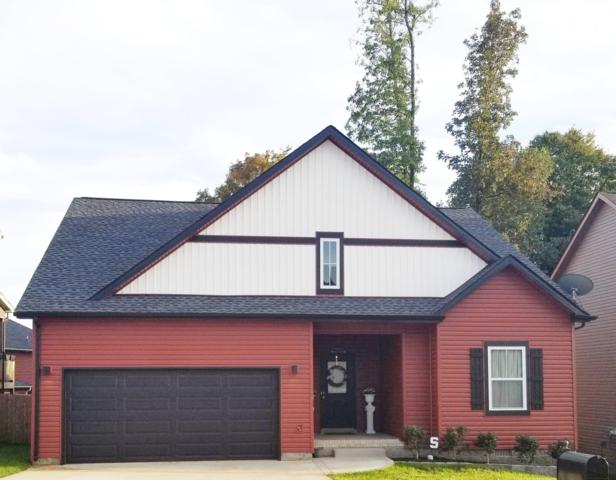 1178 Eagles Bluff Dr, Clarksville, TN 37040 (MLS #1988395) :: John Jones Real Estate LLC