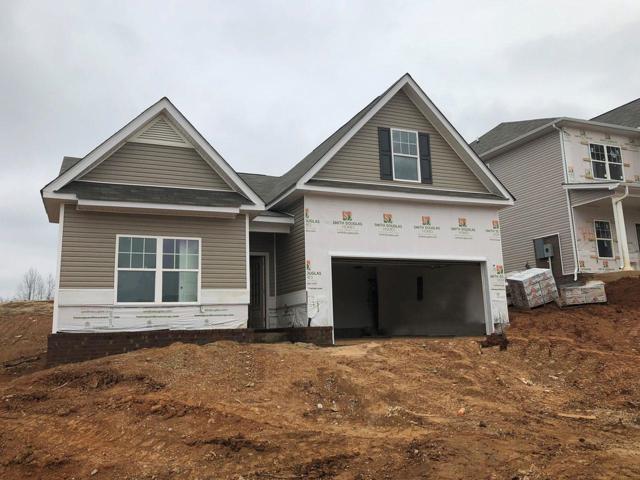 343 Coronation Dr, Columbia, TN 38401 (MLS #1993837) :: John Jones Real Estate LLC
