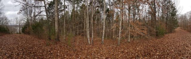 28 Glenalbyn Pass, Sparta, TN 38583 (MLS #1994785) :: John Jones Real Estate LLC