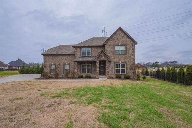 2447 Trevor Trail, Murfreesboro, TN 37128 (MLS #1994860) :: Nashville on the Move