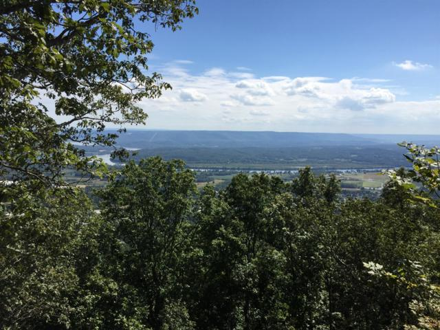2 River Bluffs Dr, Jasper, TN 37347 (MLS #RTC1997567) :: REMAX Elite