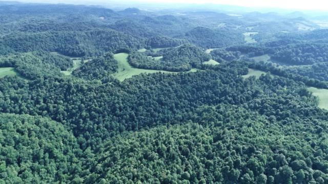 995 Massey Hollow Lane, Dixon Springs, TN 37057 (MLS #1998916) :: Christian Black Team