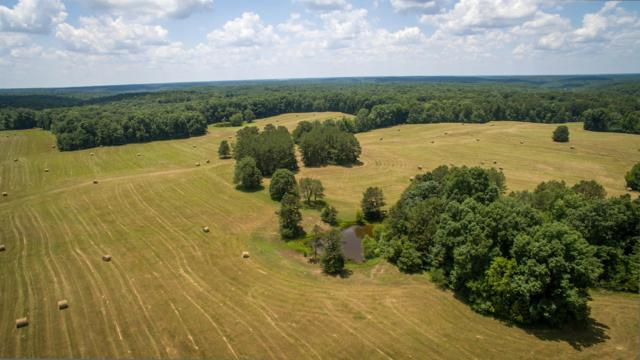 235 Von Tress Rd, Cypress Inn, TN 38452 (MLS #2003718) :: The Matt Ward Group