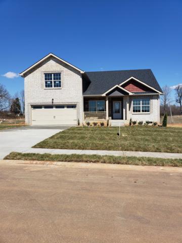 1405 Wild Fern Lane, Clarksville, TN 37042 (MLS #2004218) :: CityLiving Group