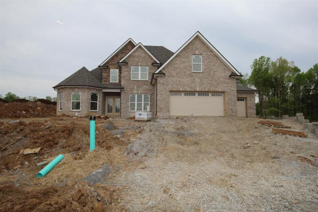 803 Sadie Ann Ct (Lot 30), Smyrna, TN 37167 (MLS #2007774) :: Hannah Price Team