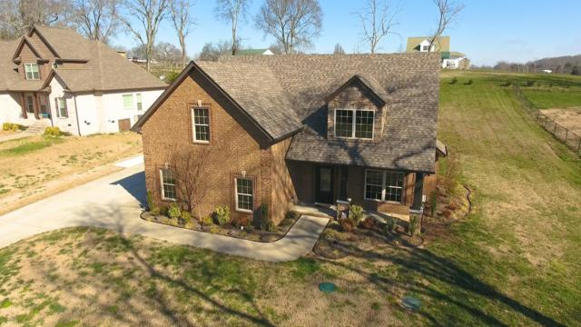 1104 Proud Eagle Dr, Eagleville, TN 37060 (MLS #2016780) :: EXIT Realty Bob Lamb & Associates