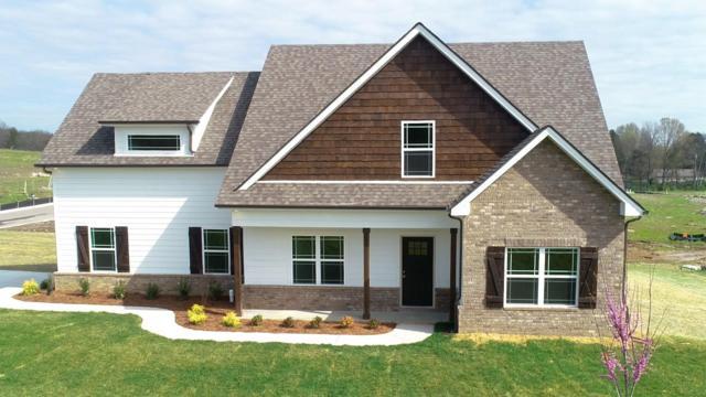 411 Peak Top Trail (Lot 146), LaVergne, TN 37086 (MLS #2020099) :: RE/MAX Homes And Estates
