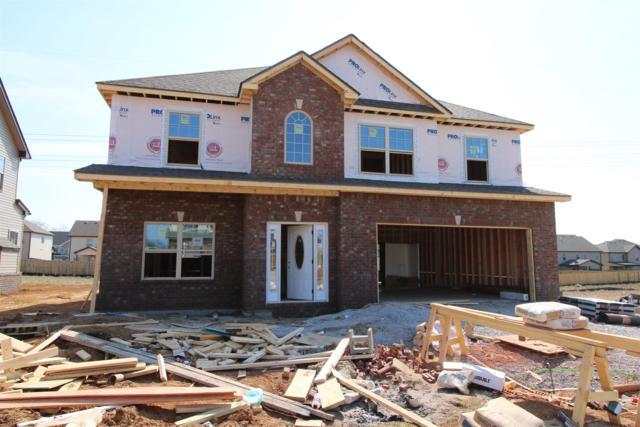 454 Summerfield, Clarksville, TN 37040 (MLS #2020559) :: REMAX Elite
