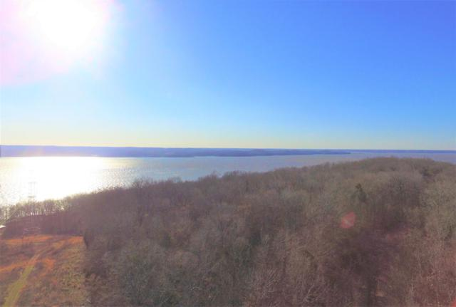 1 Leatherwood Bay Rd, Dover, TN 37058 (MLS #2020619) :: Clarksville Real Estate Inc