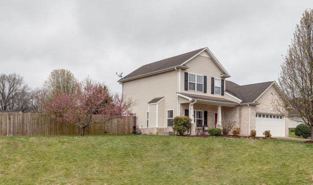 1028 Hummingbird Ln, Spring Hill, TN 37174 (MLS #2023952) :: FYKES Realty Group