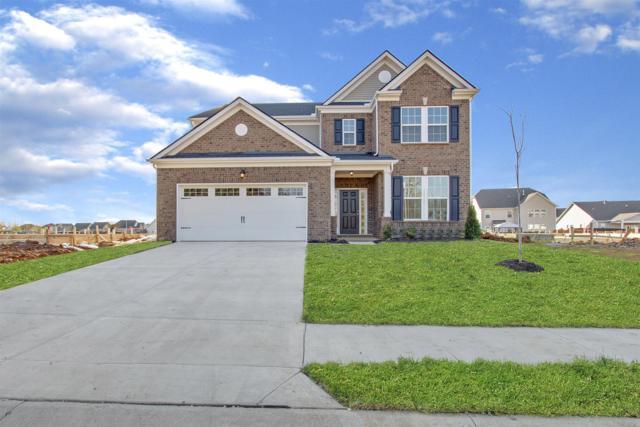 433 Nightcap Lane (Lot 173), Murfreesboro, TN 37128 (MLS #2026004) :: CityLiving Group
