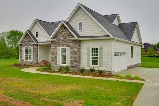 175 Stone Creek Blvd, McMinnville, TN 37110 (MLS #2031166) :: REMAX Elite