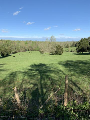 3530 Barber Highway, Cumberland City, TN 37050 (MLS #2032256) :: Ashley Claire Real Estate - Benchmark Realty