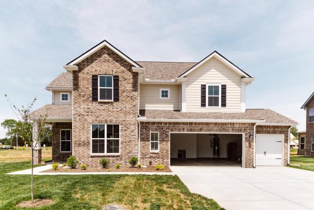 2420 Bull Rush Lane  (Lot 64), Murfreesboro, TN 37128 (MLS #2038045) :: Team Wilson Real Estate Partners