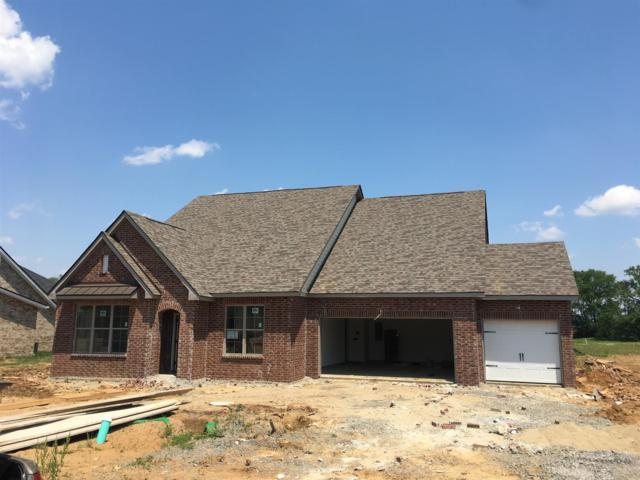 2408 Bull Rush Lane (Lot 67), Murfreesboro, TN 37128 (MLS #2040779) :: Team Wilson Real Estate Partners