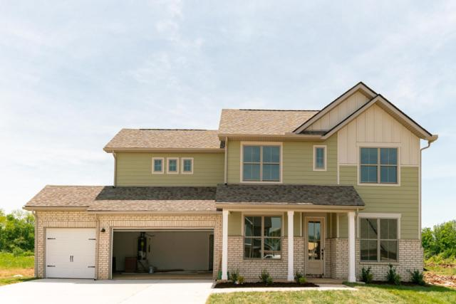 2405 Bull Rush Lane (Lot 82), Murfreesboro, TN 37128 (MLS #2040781) :: Team Wilson Real Estate Partners