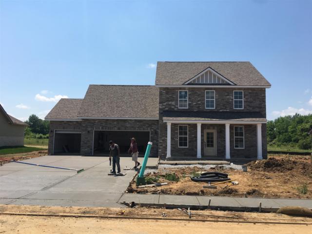 2409 Bull Rush Lane (Lot 83), Murfreesboro, TN 37128 (MLS #2040782) :: Team Wilson Real Estate Partners