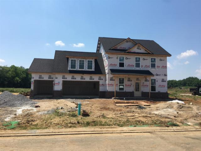 2425 Bull Rush Lane (Lot 87), Murfreesboro, TN 37128 (MLS #2040785) :: Team Wilson Real Estate Partners
