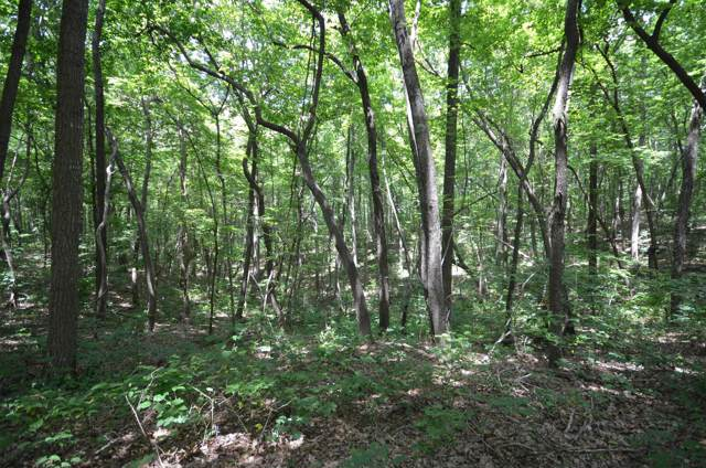 0 Valley View Drive, Altamont, TN 37301 (MLS #RTC1873939) :: Nashville on the Move