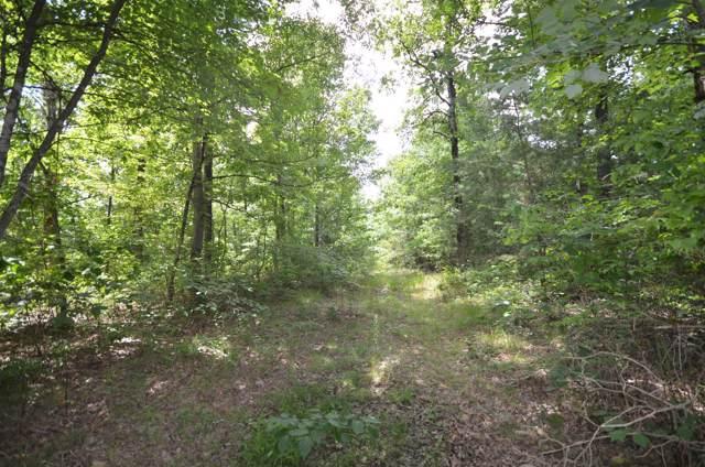 0 Hunters Trail Way, Altamont, TN 37301 (MLS #RTC1923462) :: Nashville on the Move