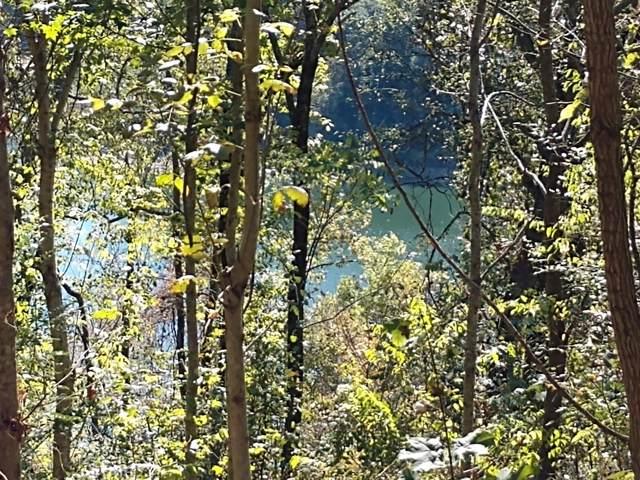 96 Blackberry Ridge Way, Smithville, TN 37166 (MLS #RTC1929821) :: REMAX Elite