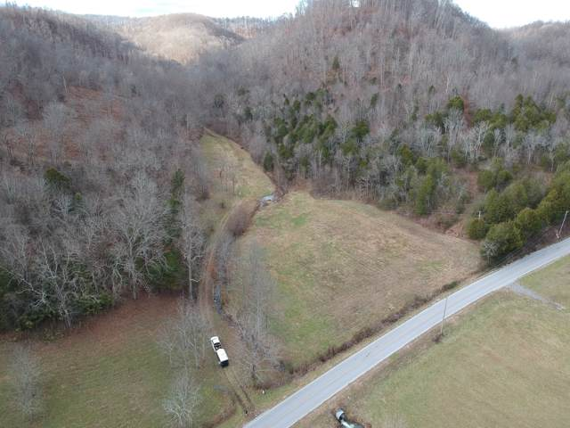 153 Big Creek Rd, Pleasant Shade, TN 37145 (MLS #RTC1991193) :: Katie Morrell | Compass RE
