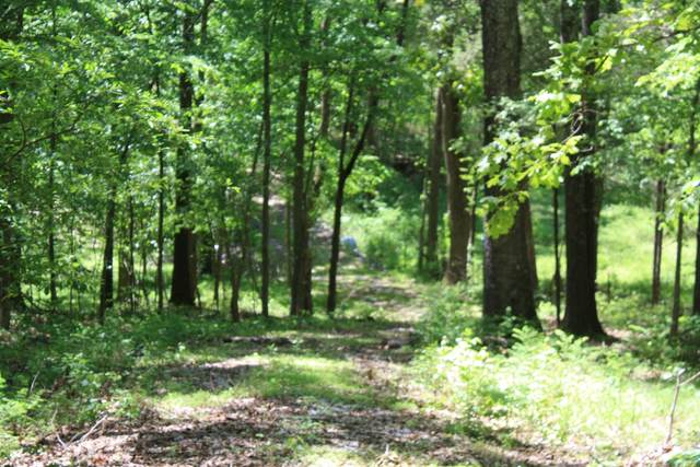 0 Guices Creek Road, Cumberland City, TN 37050 (MLS #RTC1998625) :: The DANIEL Team | Reliant Realty ERA
