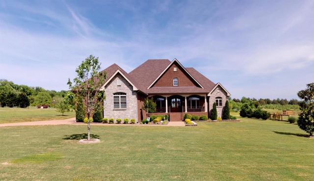 173 Spring Creek Ln, Lebanon, TN 37087 (MLS #RTC2049698) :: Village Real Estate
