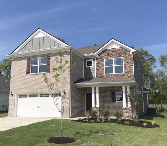 1296 Cotillion Drive (Lot 454), Murfreesboro, TN 37128 (MLS #RTC2055545) :: Ashley Claire Real Estate - Benchmark Realty