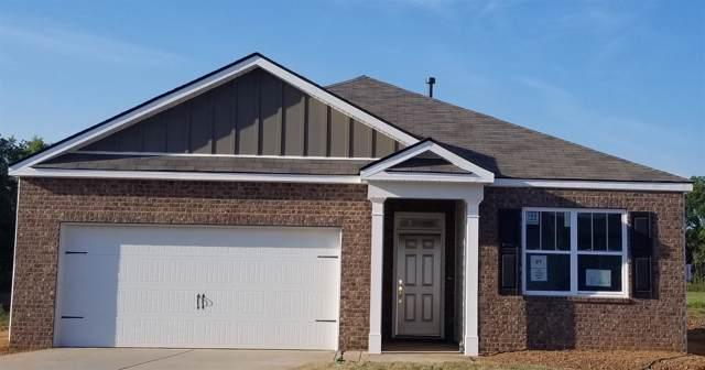 316 Tessa Grace Way, Murfreesboro, TN 37129 (MLS #RTC2058027) :: Team Wilson Real Estate Partners