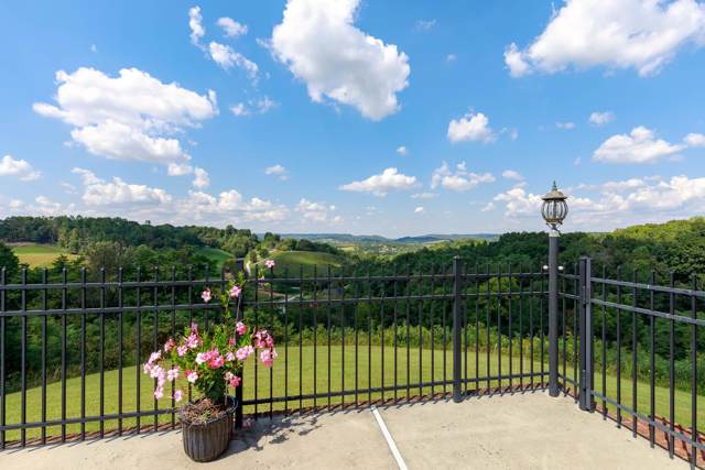378 Windy Ridge Ln, Wartrace, TN 37183 (MLS #RTC2058829) :: REMAX Elite