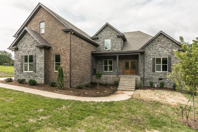 2010 Eagle View Rd, Hendersonville, TN 37075 (MLS #RTC2061298) :: REMAX Elite